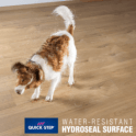 Quickstep Impressive 8mm Soft Beige Oak IM1854 Laminate Flooring