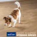 Quickstep Impressive 8mm Soft Warm Grey Oak IM1856 Laminate Flooring